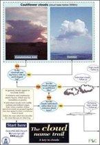 The Cloud Name Trail