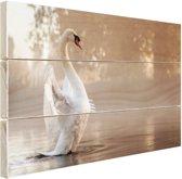 Zwaan in mistig meer Hout 30x20 cm - klein - Foto print op Hout (Wanddecoratie)