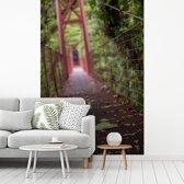 Fotobehang vinyl - Rood gekleurde brug tussen de bomen van het Bosque Nuboso Monteverde breedte 240 cm x hoogte 360 cm - Foto print op behang (in 7 formaten beschikbaar)