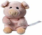 Pluche varken/big knuffel 11 cm met beschrijfbaar label