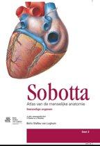 Sobotta / Deel 2 Inwendige organen