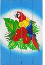 Wanddecoratie hout papegaai 60x40cm