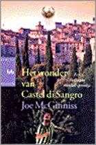 Het Wonder Van Castel Di Sangro