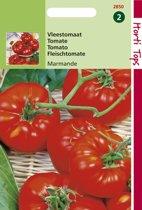 Hortitops Zaden - Tomaten Marmande Vleestomaat