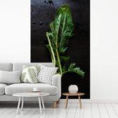 Fotobehang vinyl - Verse koolrabi op een donkere achtergrond breedte 145 cm x hoogte 240 cm - Foto print op behang (in 7 formaten beschikbaar)