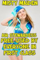Air stewardess free used by everyone in first class