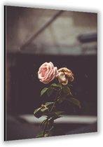 Dibond –Roze Roos– 40x60cm Foto op Dibond;Aluminium (Wanddecoratie van metaal)