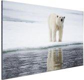 Ijsbeer bij het water Aluminium 180x120 cm - Foto print op Aluminium (metaal wanddecoratie) XXL / Groot formaat!