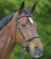 Waldhausen Bitloos Hoofdstel - Zwart - Pony