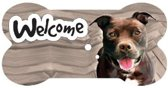 bordje - welcome - Pit Bull