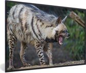 Foto in lijst - Een unieke gestreepte Hyena fotolijst zwart 60x40 cm - Poster in lijst (Wanddecoratie woonkamer / slaapkamer)