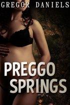 Preggo Springs