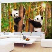 Foto Vliesbehang Muurposter Panda Bos Pandaberen 352x250 cm