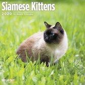 Siamees Kittens Kalender 2020