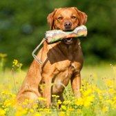 Major Dog Voer dummy groot
