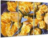 Glasschilderij Tulpen | Geel, Groen | 120x80cm 3Luik | Foto print op Glas |  F002820