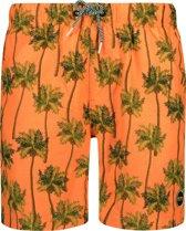Shiwi Men Swim Short Coconuts - cantaloupe - xl