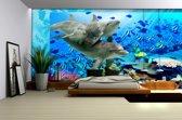 Fotobehang Papier Dolfijnen | Grijs, Blauw | 368x254cm