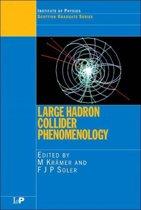 Large Hadron Collider Phenomenology