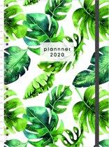 Planner Agenda - 2020 - A4(21x29,7cm) - GROOT - ringband - elastiek - D3