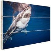 Mensenhaai Hout 120x80 cm - Foto print op Hout (Wanddecoratie)