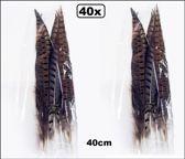 40x Fazant Veren 38/40 cm