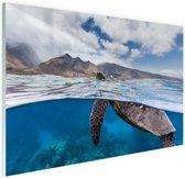 FotoCadeau.nl - Schildpad bij eiland Glas 120x80 cm - Foto print op Glas (Plexiglas wanddecoratie)