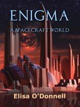 Enigma: A Spacecraft World