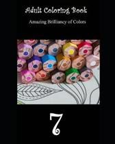 Adult Coloring Book 7