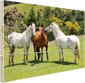Drie paarden Hout 60x40 cm - Foto print op Hout (Wanddecoratie)