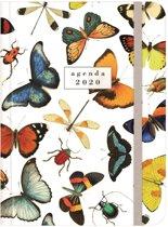Hobbit agenda soft pocket A6 vlinders D4 jaaragenda 2020 (klein formaat A6)