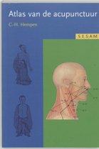 Sesam atlas van de acupunctuur