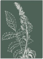 DesignClaud Vintage bloem blad poster - Groen - Puur Natuur Botanische poster A3 poster zonder fotolijst