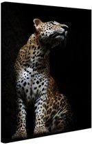 Luipaard portret  Canvas 60x80 cm - Foto print op Canvas schilderij (Wanddecoratie)