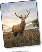Elegante Plaid Dasher 130x160 - Prachtige Design - Heerlijk Zacht