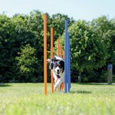 Trixie dog activity agility slalom stokken blauw / oranje 115x3 cm 12 st