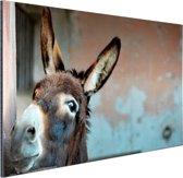 FotoCadeau.nl - Ezel Aluminium 60x40 cm - Foto print op Aluminium (metaal wanddecoratie)
