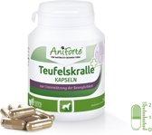 AniForte® - Duivelsklauw - capsules voor honden (100 stuks)
