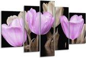 Glasschilderij Tulpen   Paars, Grijs   170x100cm 5Luik   Foto print op Glas    F002862