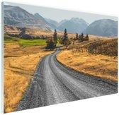 Weg Nieuw-Zeeland  Glas 30x20 cm - Foto print op Glas (Plexiglas wanddecoratie)