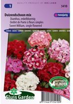 Sluis Garden - Duizendschoon Enkelbloemig Gemengd (Dianthus)