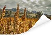 Graanvelden voor het berglandschap van Arequipa Poster 120x80 cm - Foto print op Poster (wanddecoratie woonkamer / slaapkamer)