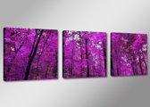 Schilderij - Boom, Paars, 150X50cm, 3luik