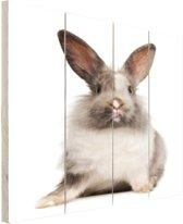 Zittend konijn fotoafdruk Hout 80x120 cm - Foto print op Hout (Wanddecoratie)
