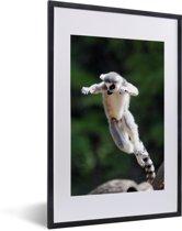 Foto in lijst - Een ringstaartmaki sprint over een boomstam fotolijst zwart met witte passe-partout 40x60 cm - Poster in lijst (Wanddecoratie woonkamer / slaapkamer)