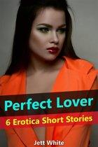 Perfect Lover: 6 Erotica Short Stories