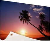 Silhouet van palmbomen bij zonsondergang Tuinposter 200x100 cm - Tuindoek / Buitencanvas / Schilderijen voor buiten (tuin decoratie) XXL / Groot formaat!