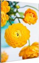 Oranje boterbloemen Aluminium 40x60 cm - Foto print op Aluminium (metaal wanddecoratie)
