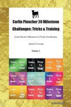 Carlin Pinscher 20 Milestone Challenges