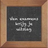 Wijsheden op krijtbord tegel over School met spreuk :Van examens krijg je uitslag